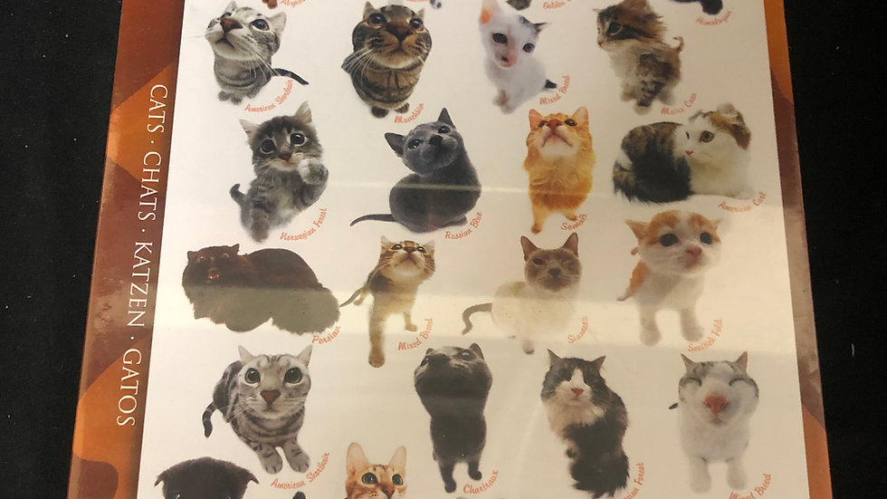 1000 piece Cats Puzzle sealed