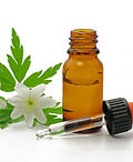 Aromathérapie - reflexologie plantaire & MTC montmorillon