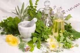 Des plantes contre le stress...