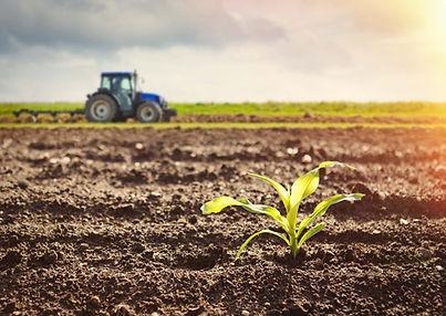 agroecologie.jpg