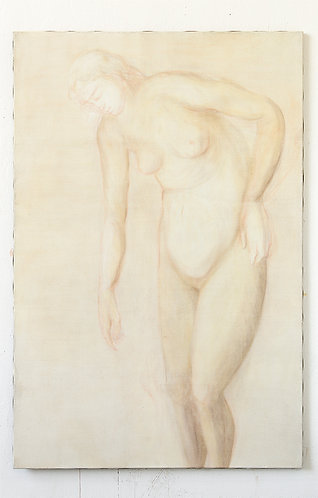 Friederike Stachowitz