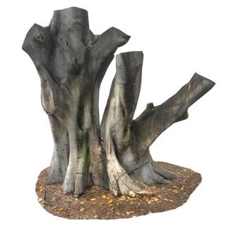 Tree Trunk #24
