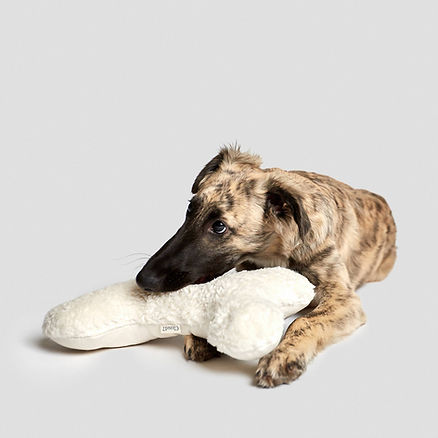 cloud7-dog-toy-love-bone-white-plush-dog