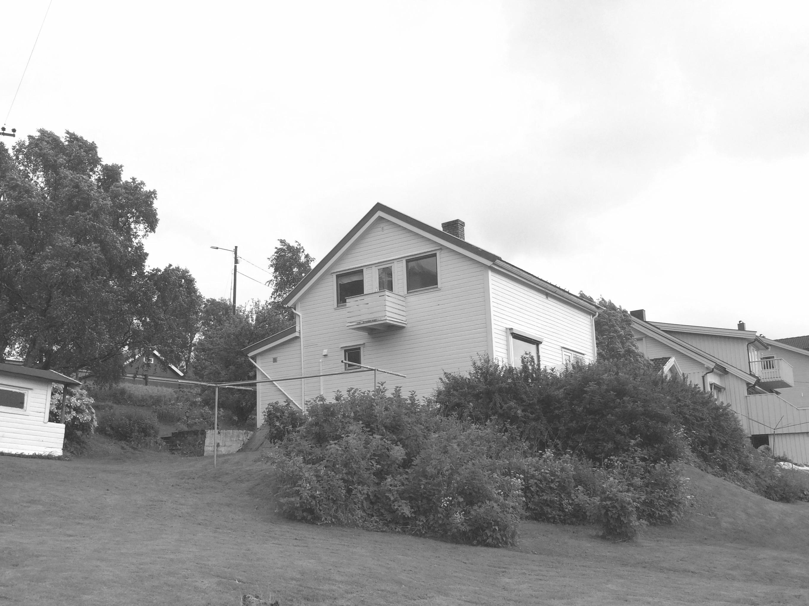 Huset sett fra hagen - før