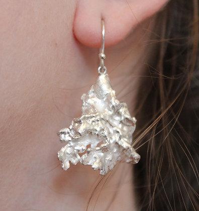 Windfall lichen earrings
