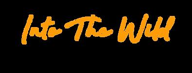 itw logo met baseline_ FE9D08.png