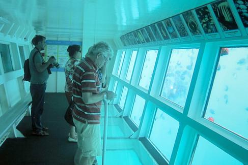 Underwater viewing room