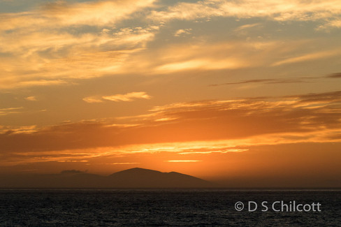 Falklands sunrise (3).jpg