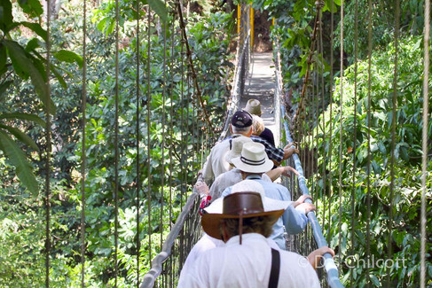 Costa Rican rope bridge