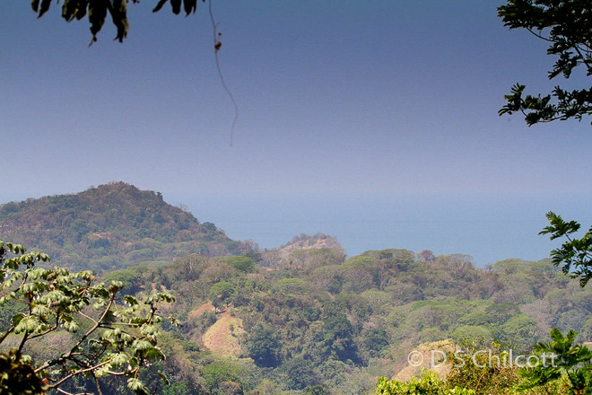 Costa Rican view