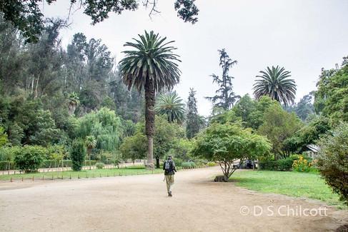 Valparaiso botanical gardens