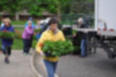 flower sale 4 .JPG