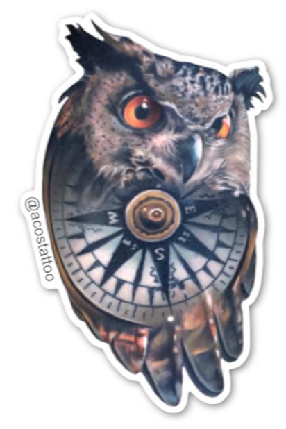 Compass Owl