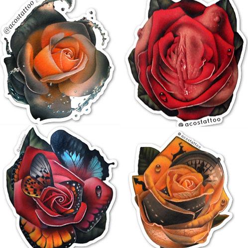 Rose Morph Pack of 4
