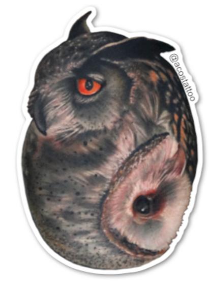 Yin-Yang Owl