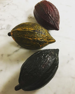 painted cacao pods