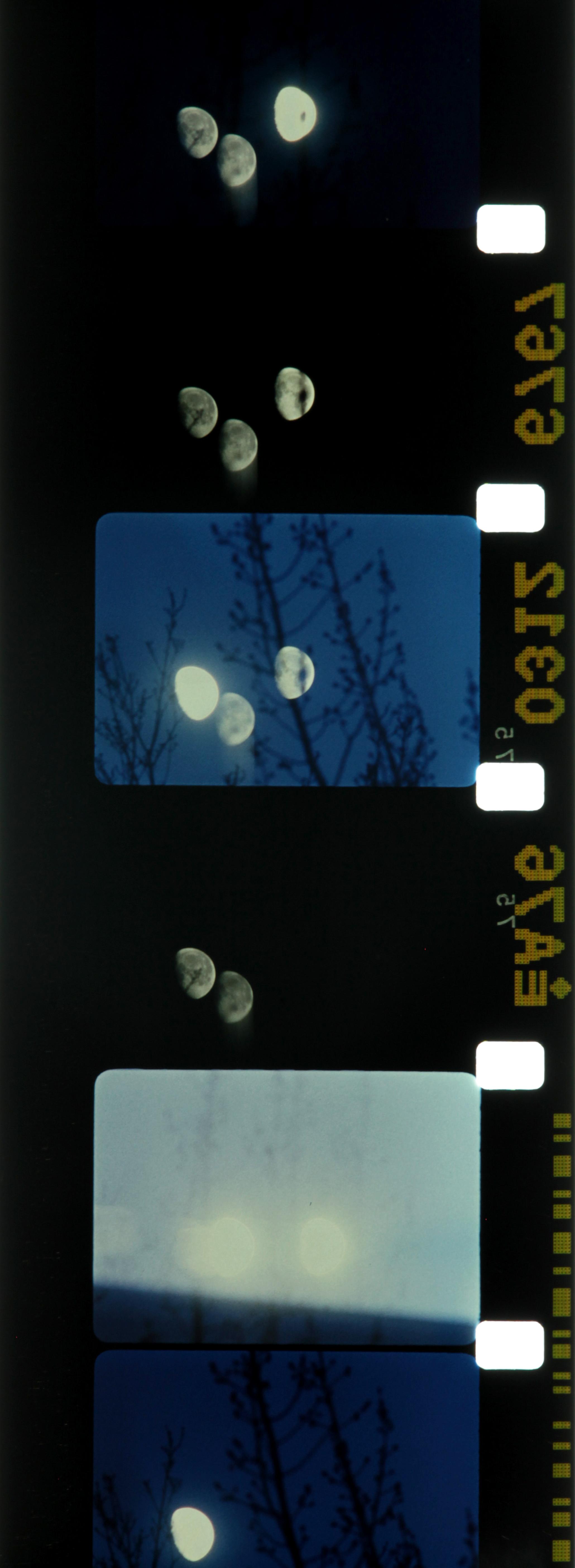 Lunar Almanac Malena Szlam 2013