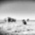Tour Atacama (Oona Mosna).png