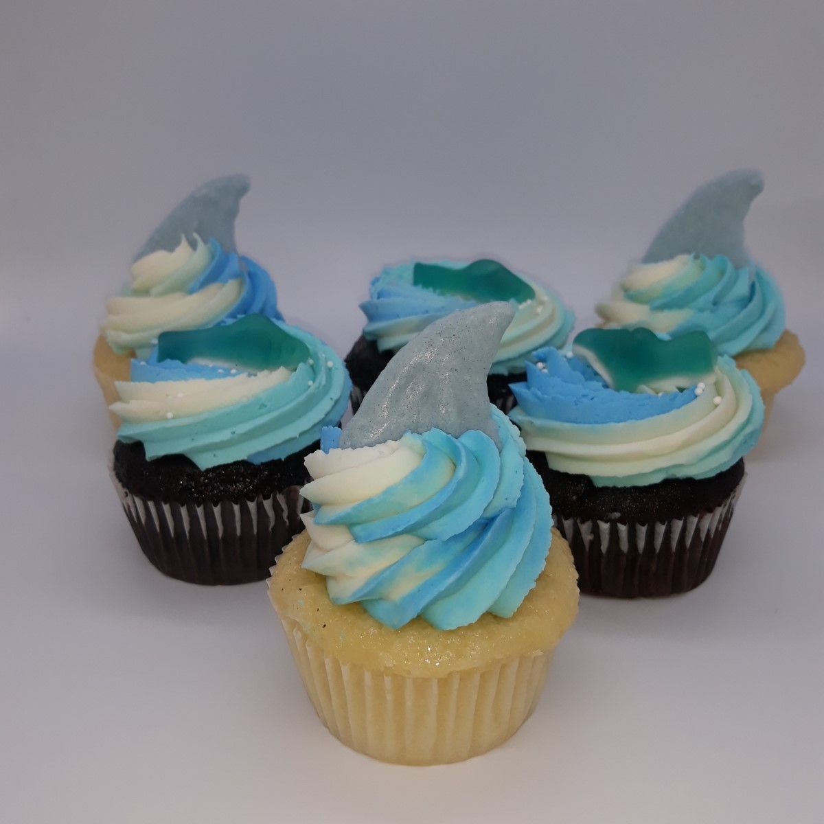 Shark Cupcakes #2- Jude