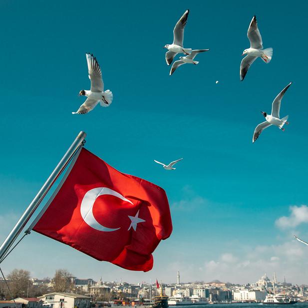 istanbulSHAN2798
