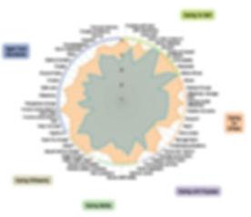 CISCA%20Graph_edited.jpg