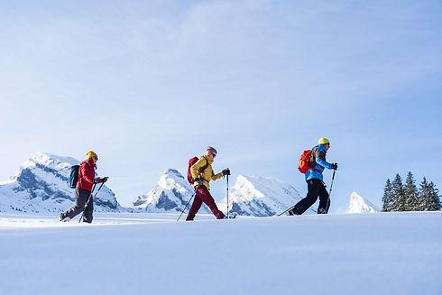 TT_Schneeschuhwandern-2-ede90728.jpg