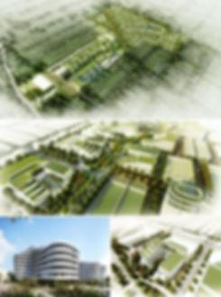 Newpark Masterplan_All.jpg