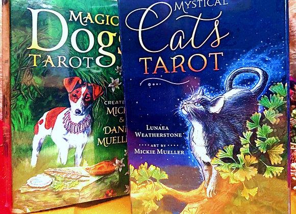 Animal Tarot (Cat or Dog)