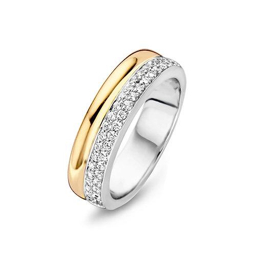 15096AY Moments zilveren ring verguld