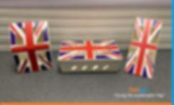 Delipac Flag.jpg