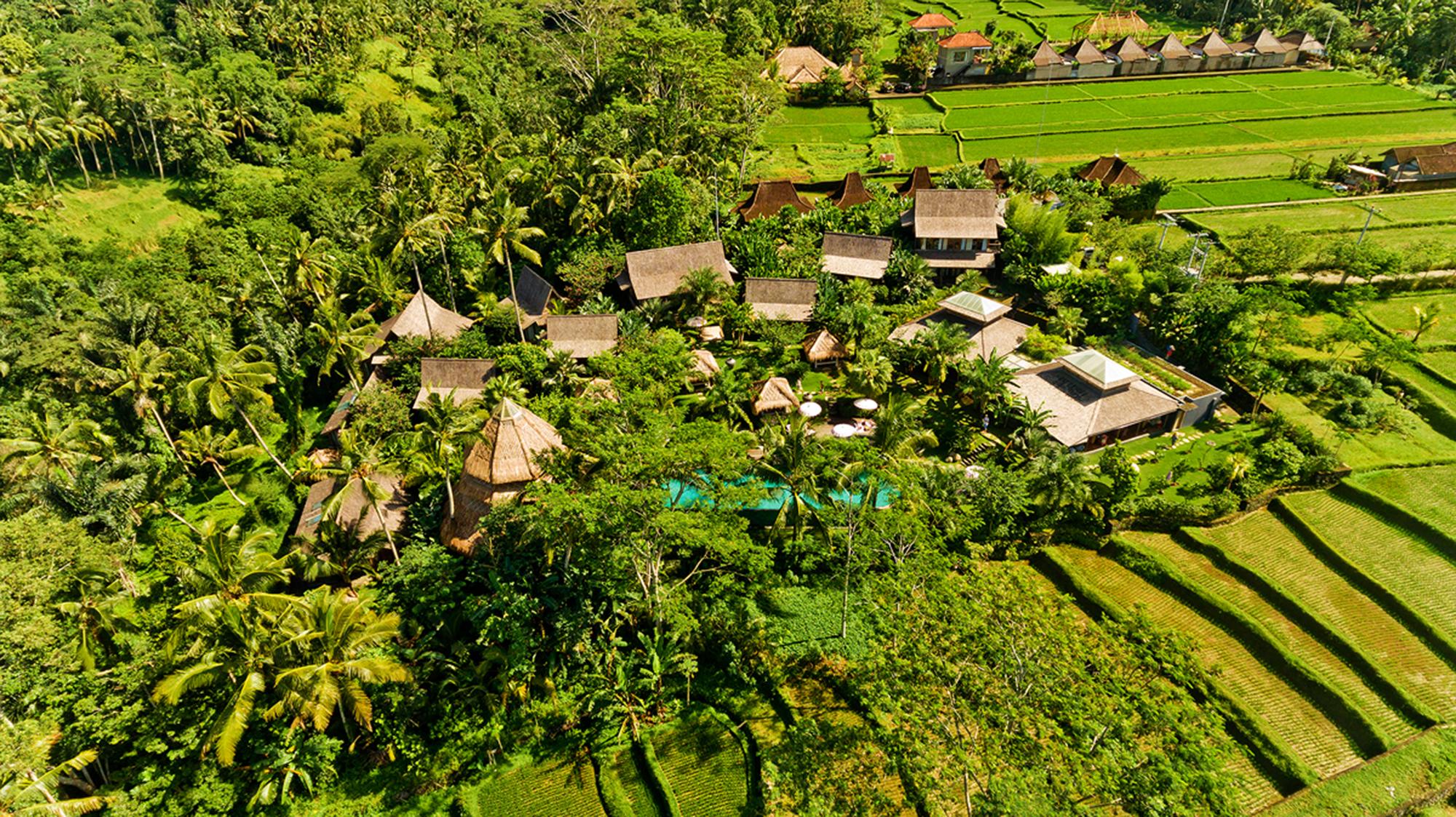 Aerial Blue Karma Ubud (16)