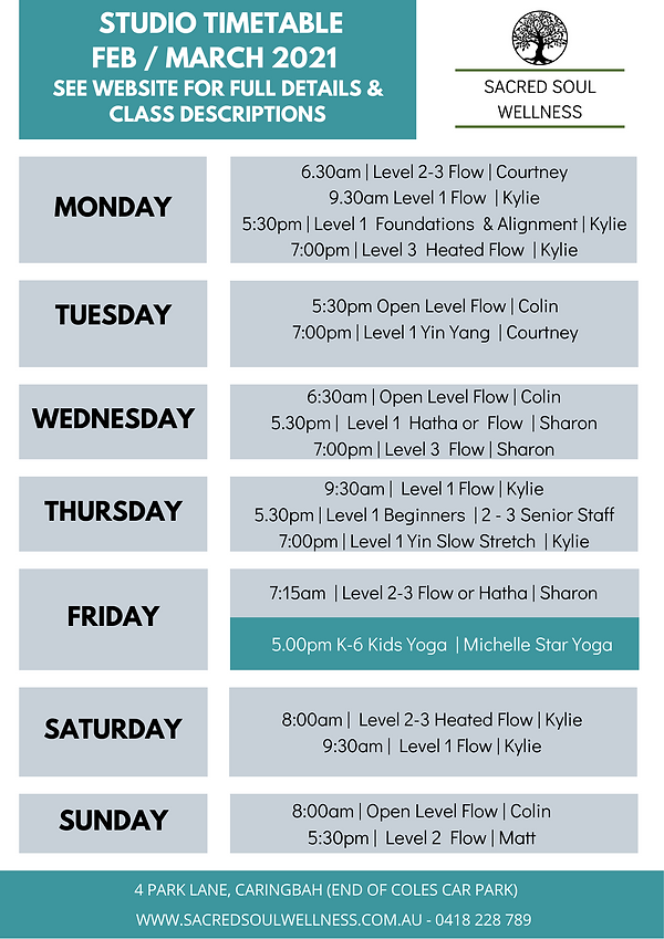 Studio TimetableFeb March  A4 SIZE.png