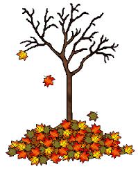 Autumn 2020 curriculum news