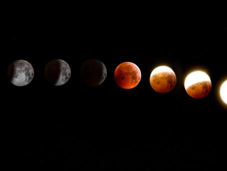 Las fases de la luna y qué hacer durante cada una