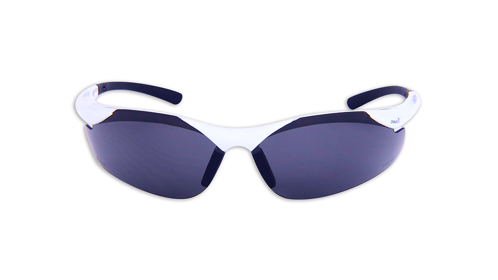 X6W13 SAFETY GLASSES