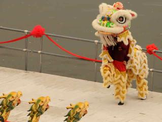 華府青少年龍舟隊於參加了在賓州Harrisburg 由中華文化藝術學會舉辦的第二屆龍舟竸賽