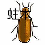 蛀木蟲ICON.jpg   , 蛀木蟲(竹蠹、竊蠹) Wood-boring Insects ,蛀木蟲洞 , 木粉