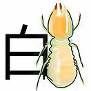 白蟻ICON.jpg 白蟻 (大水蟻) 、大白蟻、飛蟻