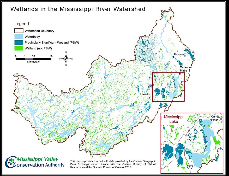 2016-Mississippi-Lake-Wetlands-Map.png
