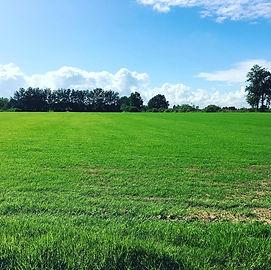 mowing-grass-fields