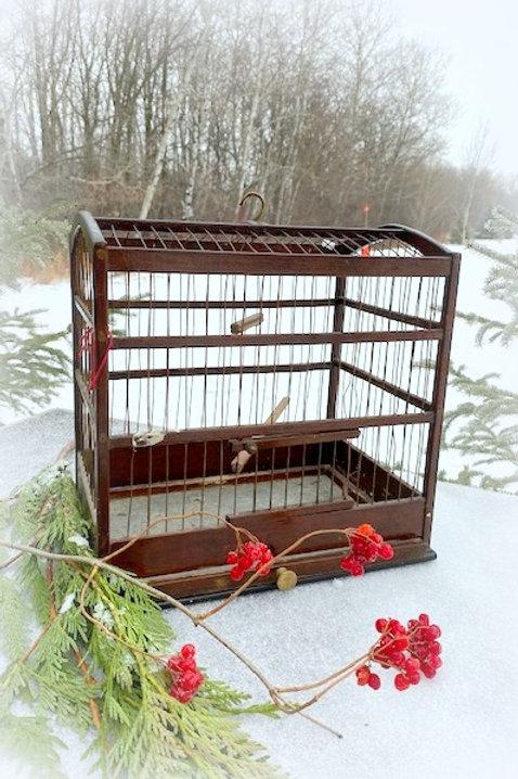 Antique Wood Bird Cage