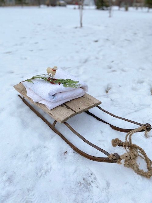 Early Primitive Sleigh