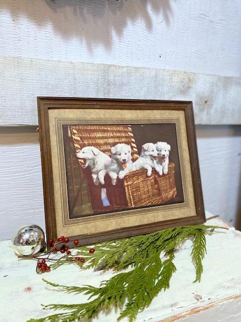 Antique Dog Picture