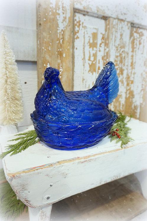 Cobalt Blue Hen on Nest