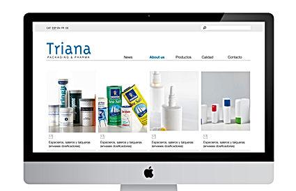 PLANTILLA PROJECTES WEB.jpg