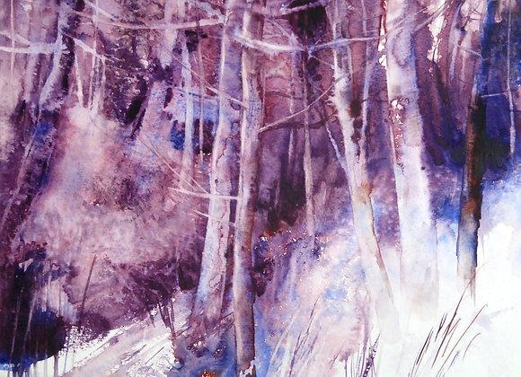 Le vallon des arbres