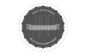 2018 Daily Choice Badge.png