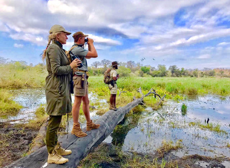 Interview with Made in Chelsea's Tristan Phipps - Adventures of a Walking Safari Guide