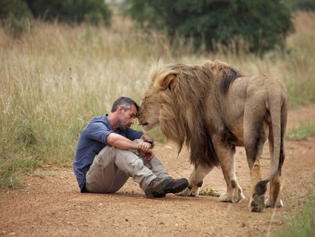 (Ep. 1/4) Who is the 'Lion Whisperer'? Getting to Know Kevin Richardson - the Man Behind the Mane
