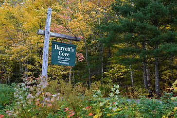 Barrett's Cove